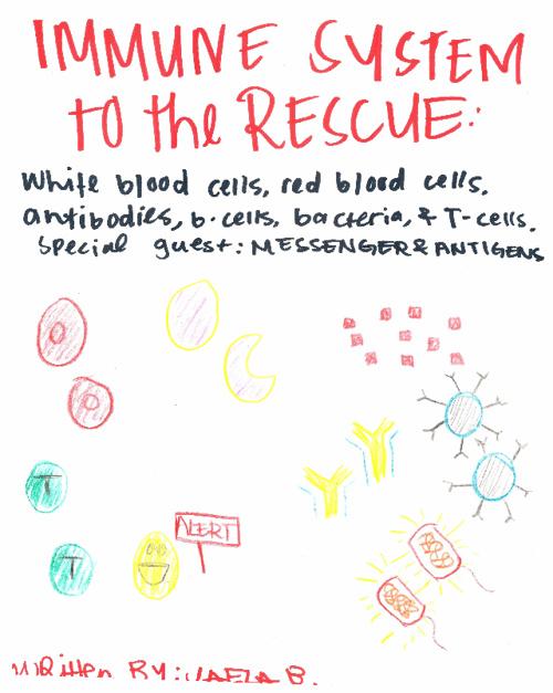 Immune System Book by Jaela