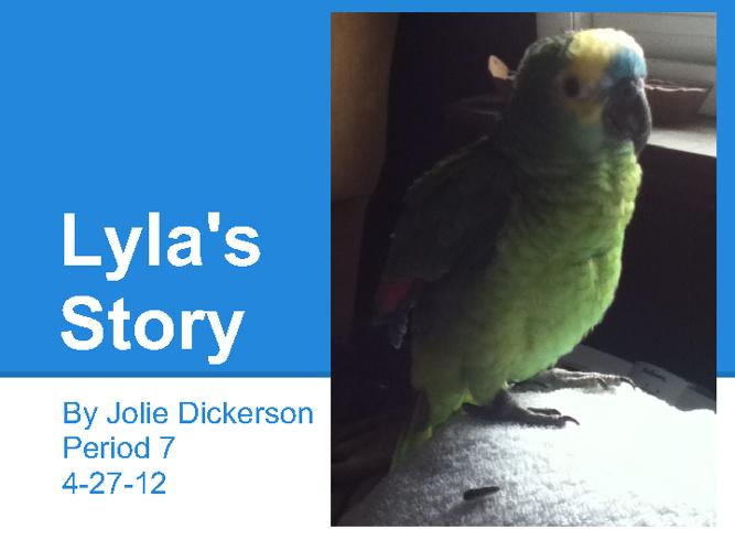 Lyla's Story