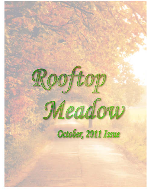 Rooftop Meadow Issue 1 (October 2011)