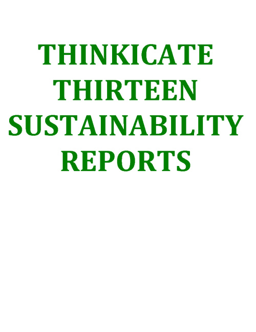Room 13's Sustainability Reports