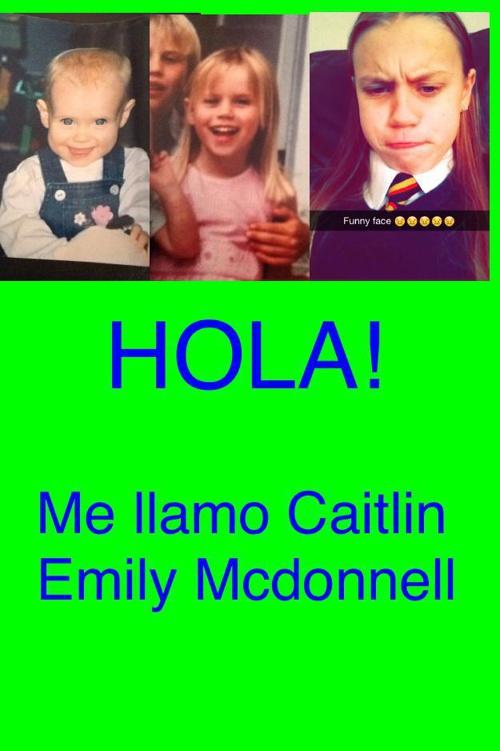 Caitlin mcdonnell spanish assessment