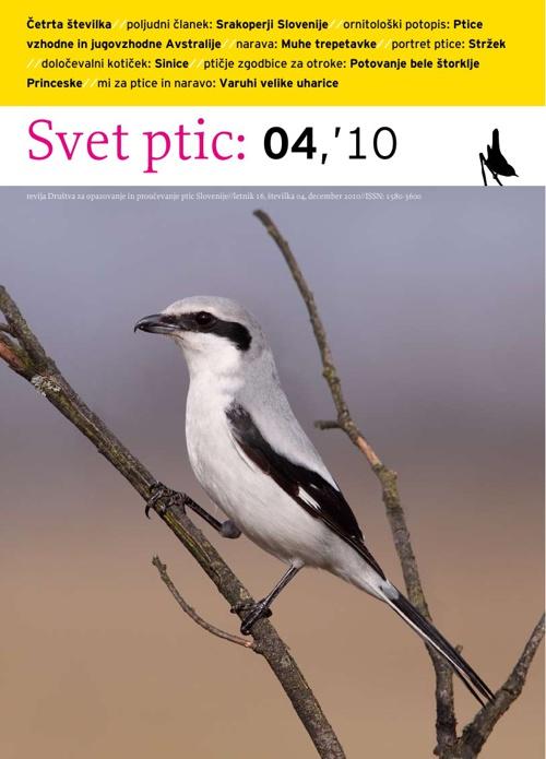 Svet ptic 04'10