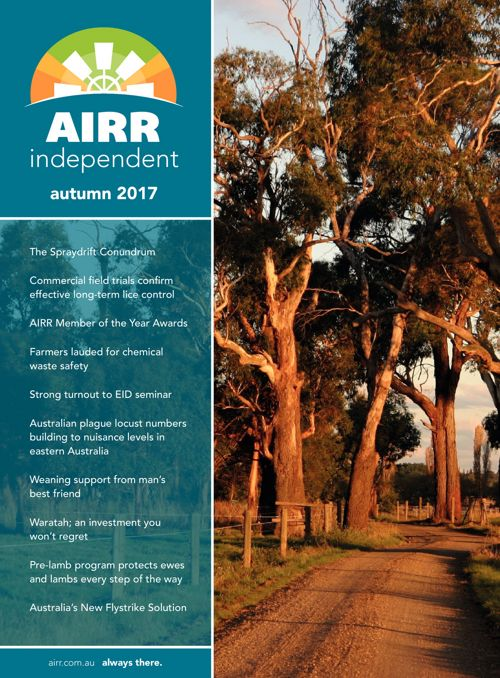 AIRR Independent Autumn 2017