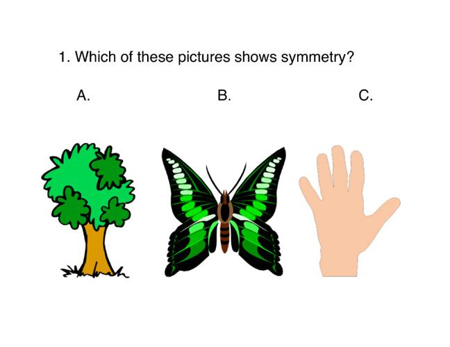Elementary Art Quiz
