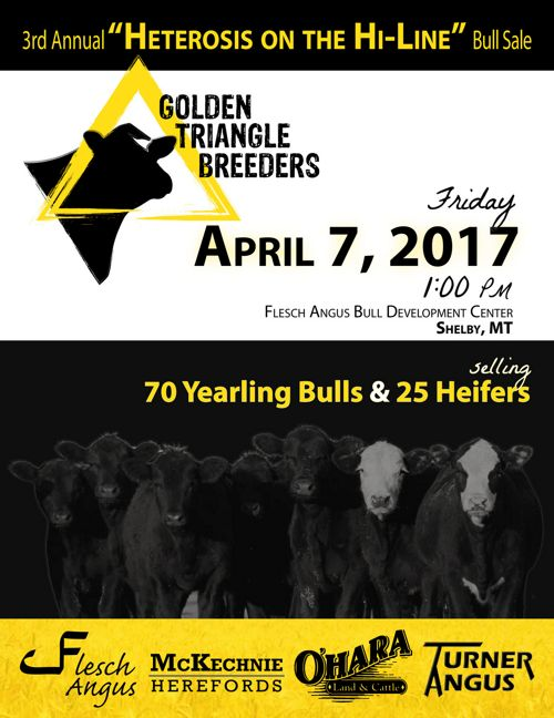 Golden Triangle Breeders 2017 Sale Catalog