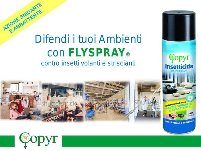 Leaflet FLYSPRAY
