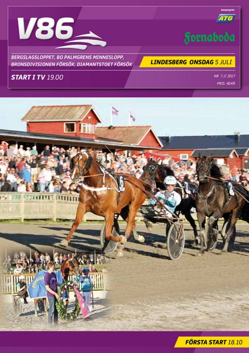Lindesberg 170705 V86