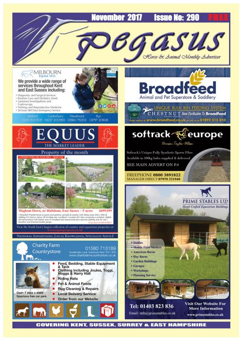 PEGASUS NOVEMBER ON-LINE eMag