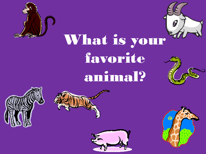 What's your favorite animal? by Brooke Rhoades