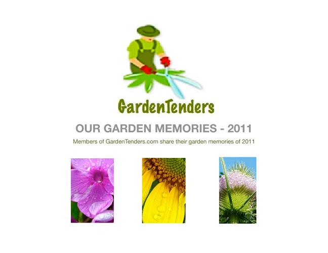 GardenTenders' Memories of 2011