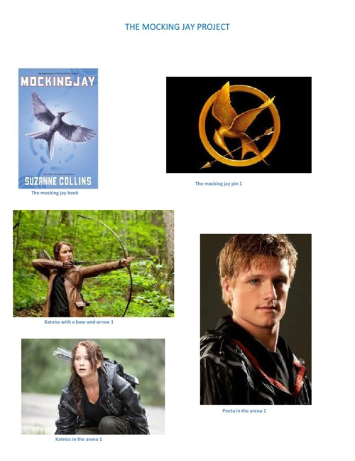 THE MOCKING JAY FRONT PAGE