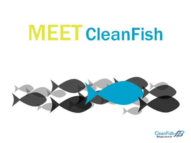 Meet CleanFish