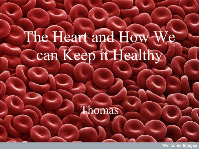 The Heart and How to Keep it Healthy