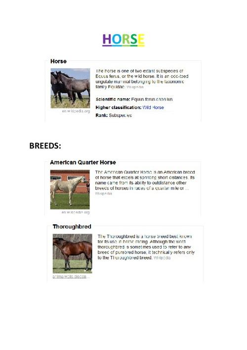 Copy of Horse