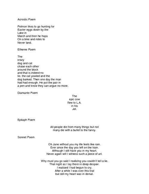 Poem Notebook