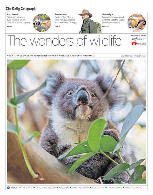 South Australia Telegraph
