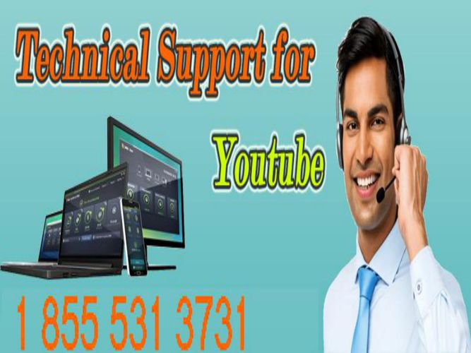 Youtube Customer Service 1 855 531 3731 Phone Number USA