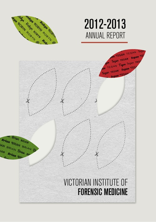 VIFM Annual Report 2012-2013