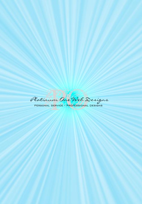 Platinum One Web Designs US