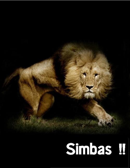 El Alma de un Simba