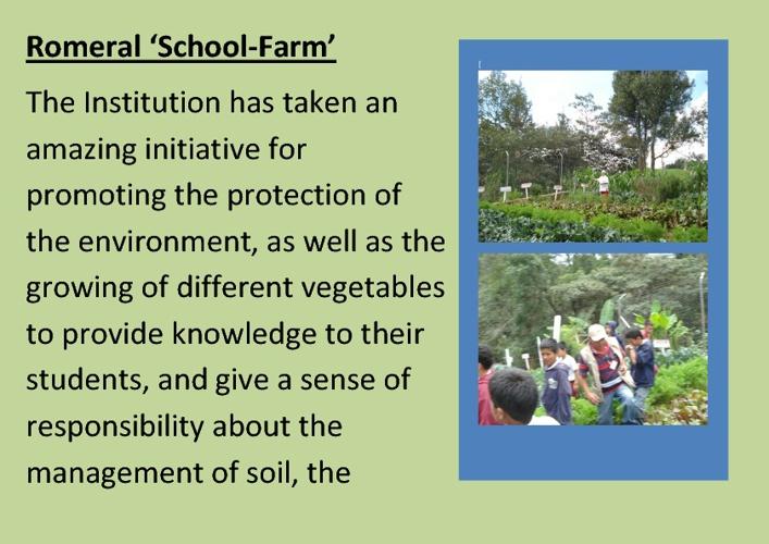 My 'School-Farm' at Romeral
