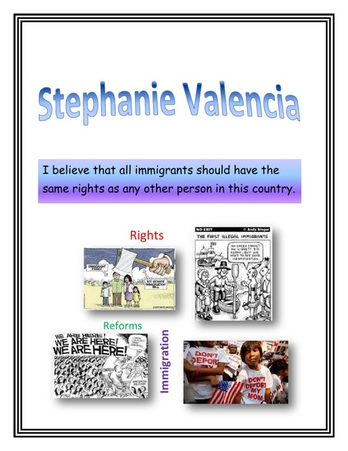 Stephanie's Political Platform Project