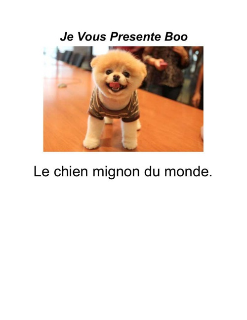 FrenchBook (3)