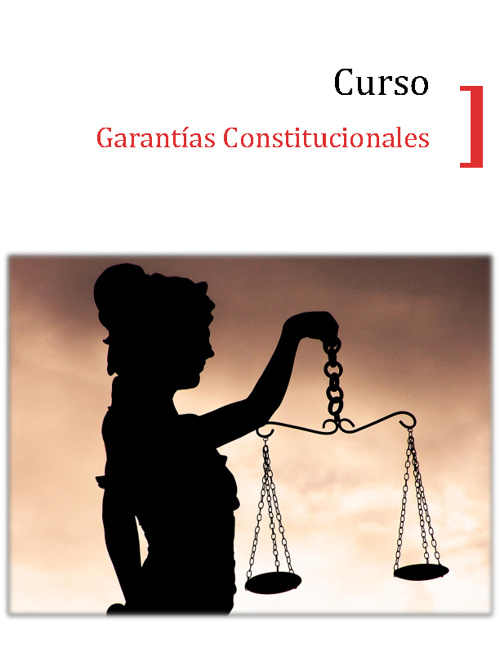 Brochure Curso Garantias Constitucionales