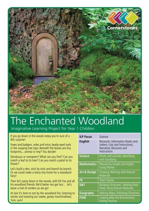 (KS1 ILP) The Enchanted Woodland