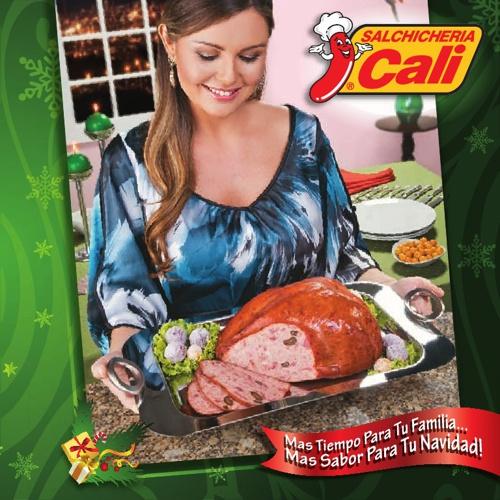 Catalogo PDV Navidad