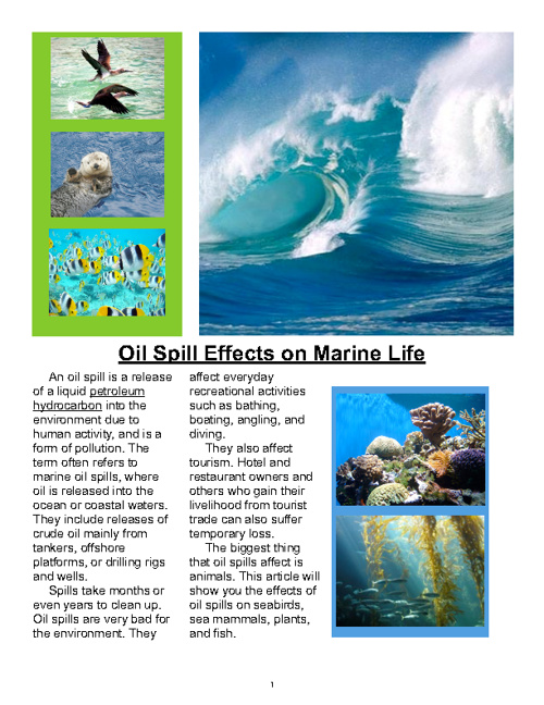 Oil Spill Effects on Marine Life