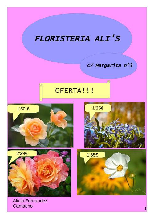 catalogo floristeria