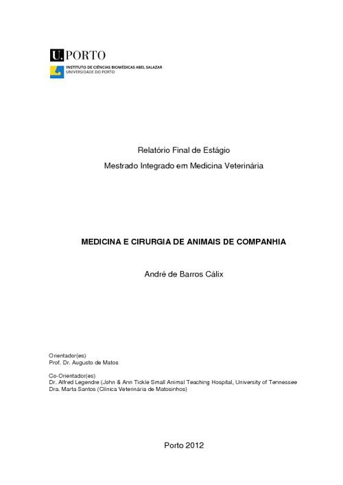 Relatório de Estágio MIMV A. Cálix