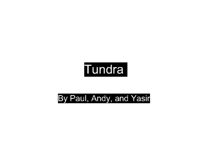 Tundra-4B