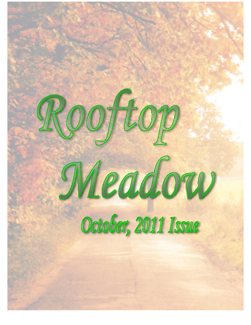 Rooftop Meadow Issue 1 (October, 2011)