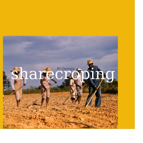 sharecropping by Georgia may linnet Thompson