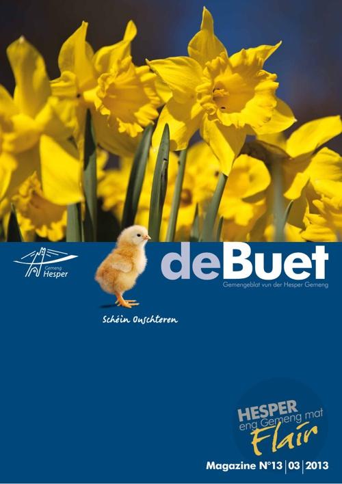 deBuet13