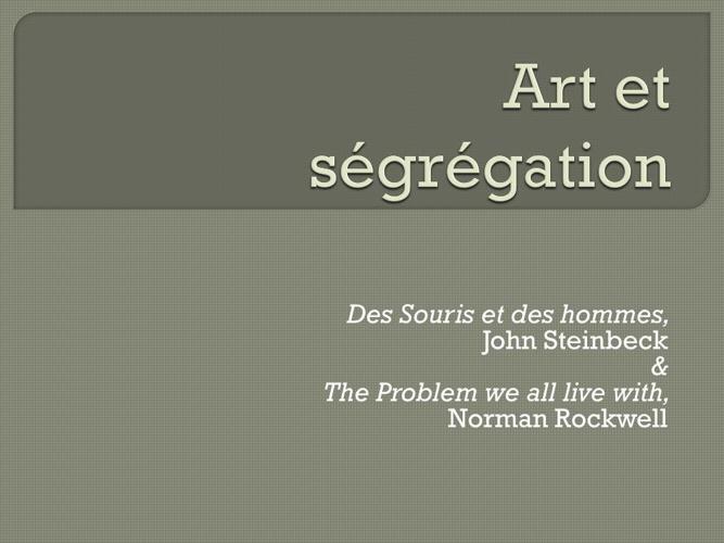 Art et ségrégation