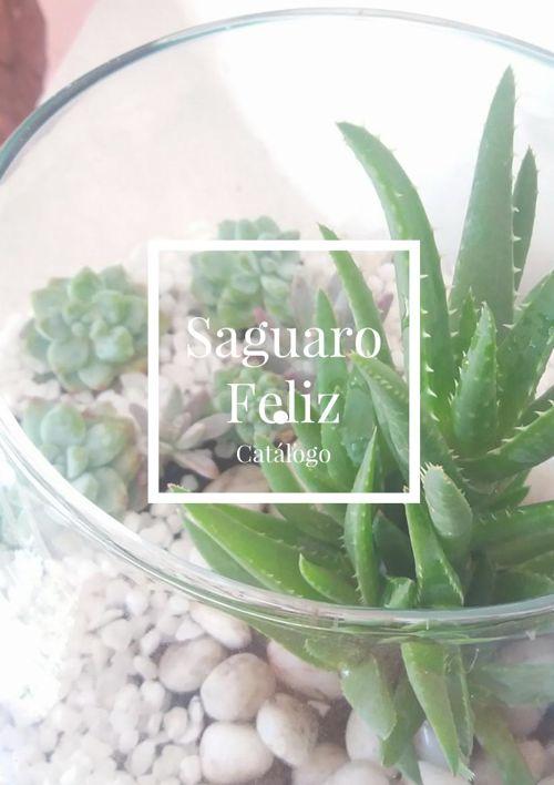 Catalogo Saguaro Feliz