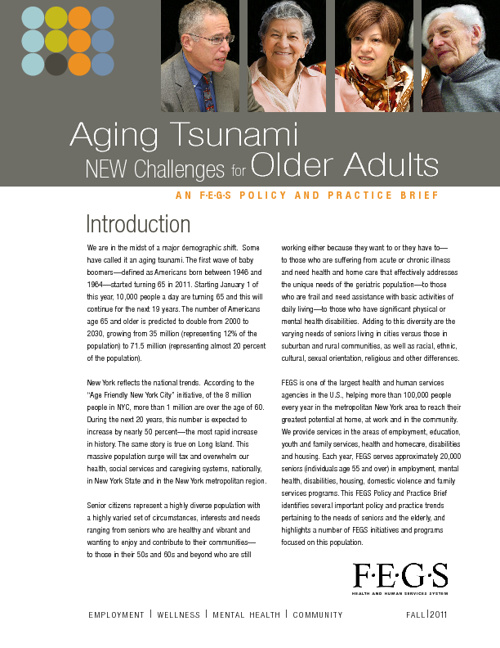 Challenges for Older Adults