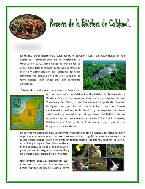 La reserva de la biosfera de Calakmul