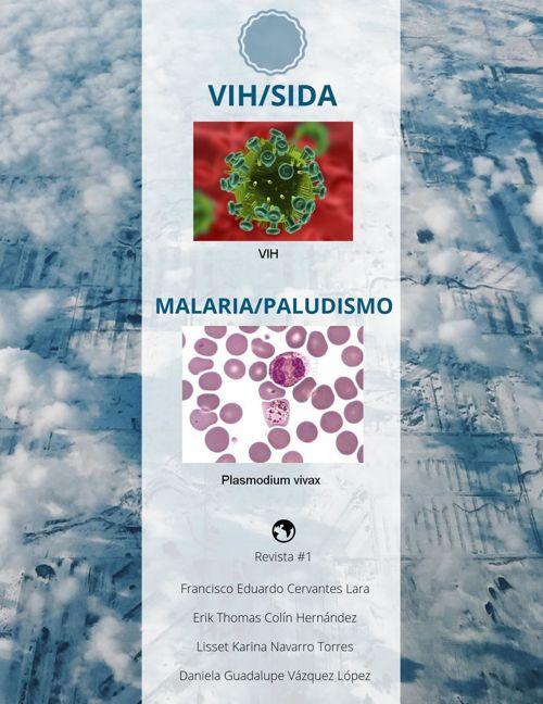 VIH/SIDA Y MALARIA/PALUDISMO