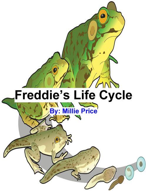 Frog book Mi P.