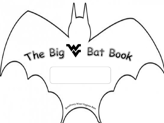 WV BAT booklet