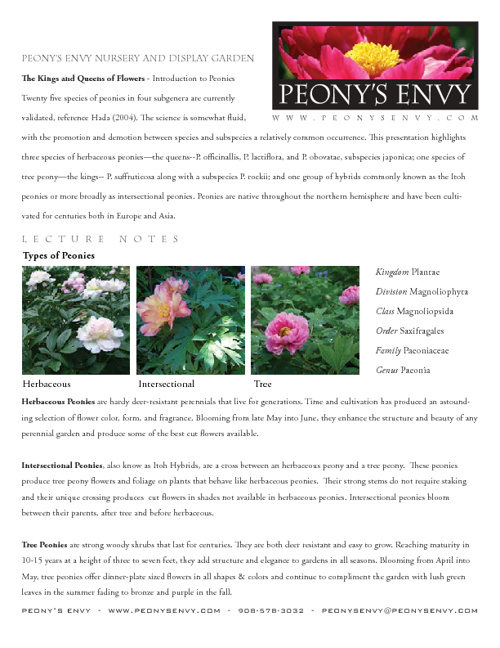 Kinds of Peonies