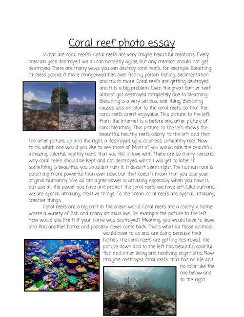 Coral reef photo essay - Google Docs
