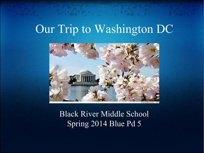Our Trip to Washington DC_Blue Pd 5 (1)