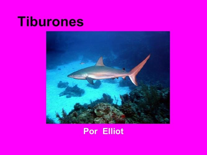 Elliot tíburones