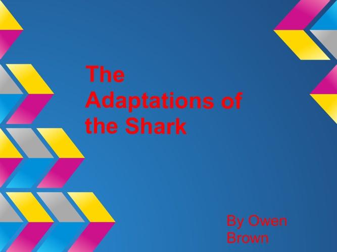 The Shark's Adaptation's