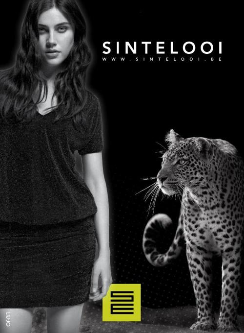 Brochure najaar 2014 St Elooi